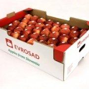 جعبه لمینت | کارتن میوه
